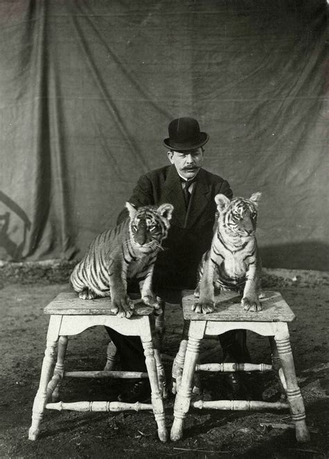 Interesting Vintage Pictures of Circus in Netherlands From